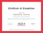 ACE certificate 2018