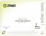 Basic Steps Level 1 certification October 2014